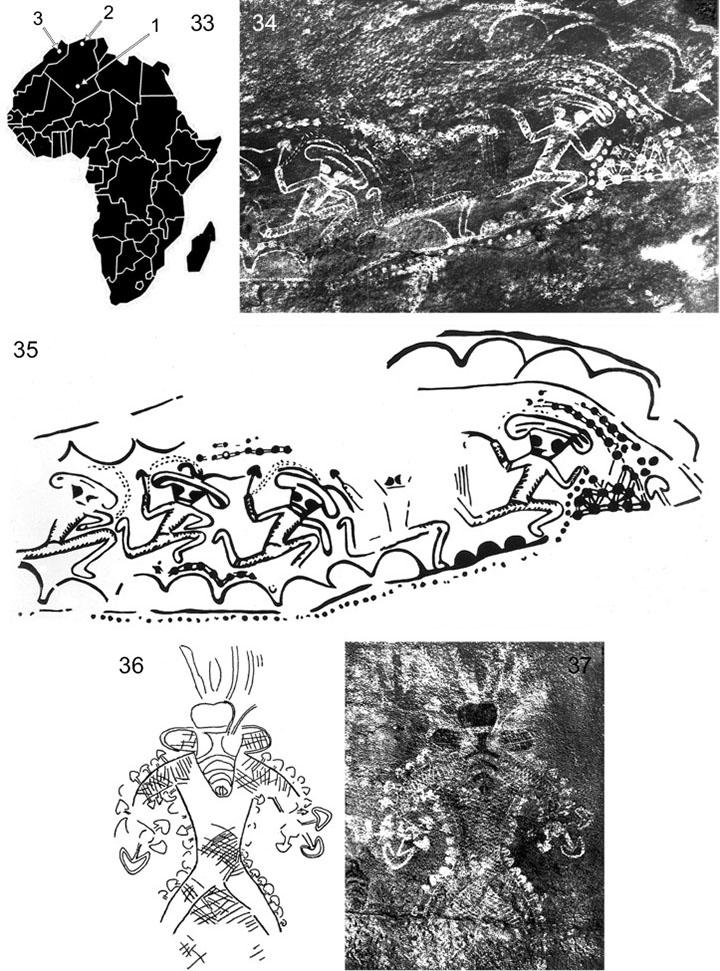 Nuevas observaciones taxonómicas y etnomicológicas en